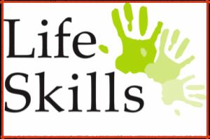 lifeskill-101-ver-1-300x198